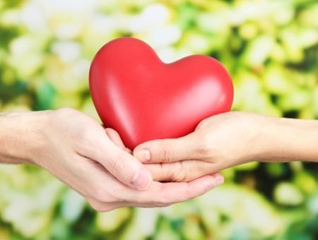 Egészséges Szív- és érrendszer